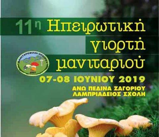 Γιάννενα: «11η Ηπειρωτική Γιορτή Μανιταριού» 7 & 8 Ιουνίου Στα Άνω Πεδινά